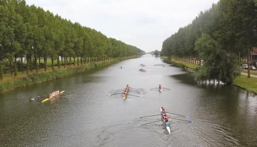 Studenten sporten en doen aan cultuur in Almere
